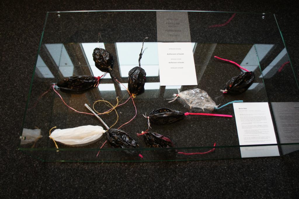 Rats Exhibition DSC08149