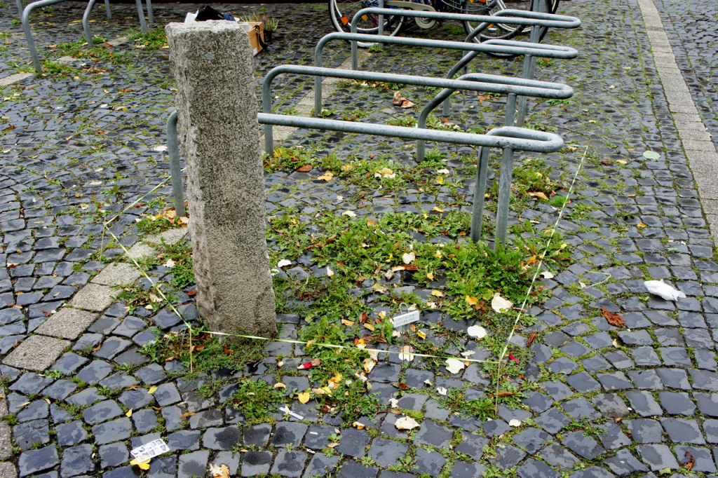 Stadtklimaschutzzone - 4